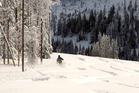 Red-mountain-cat-skiing